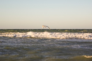 Havet. Foto: Linda Dahlström