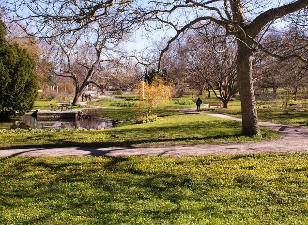 Botaniska trädgården våren 2015. Foto: Linda Dahlström