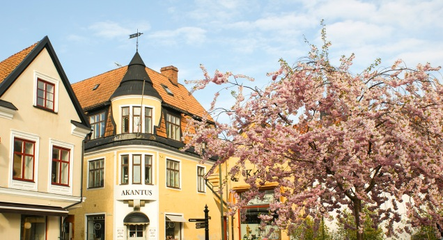 St Hansgatan våren 2015. Foto: Linda Dahlström