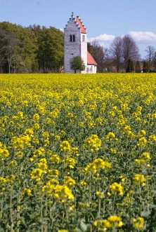 Västerhejde kyrka. Foto: Linda Dahlström