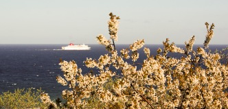 Färja, Gotland. Foto: Linda Dahlström