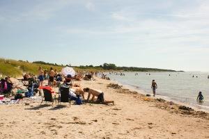 Tofta strand. Foto: Linda Dahlström