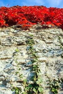 Detalj av ringmuren. Foto: Linda Dahlström