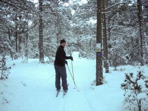 Skidåkning vid VOK-stugan. Foto: Linda Dahlström